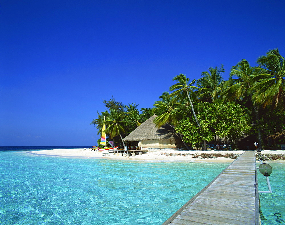 A tropical beach with palm trees in the Maldive Islands, Indian Ocean, Asia