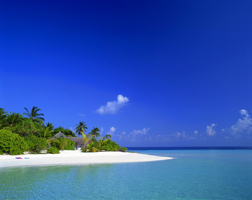 A tropical beach with palm trees and thatched huts in the Maldive Islands, Indian Ocean, Asia