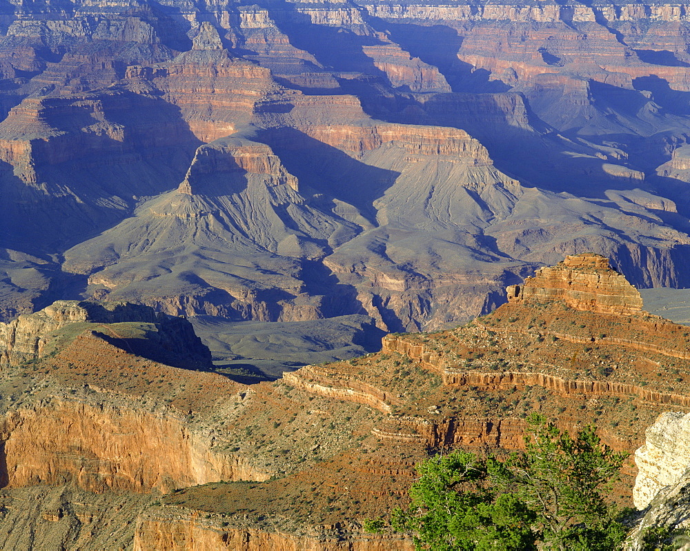 The Grand Canyon viewed from Mather Point, UNESCO World Heritage Site, Arizona, United States of America, North America - 383-66