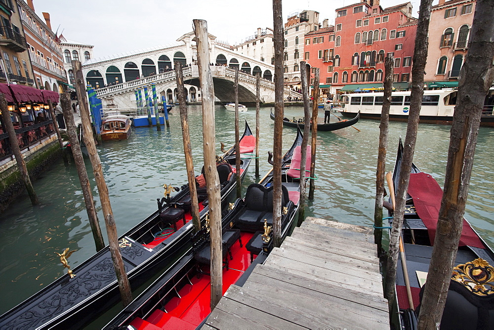 Gondolas line the Grand Canal beside the Rialto Bridge, Venice, UNESCO World Heritage Site, Veneto, Italy, Europe - 385-1675
