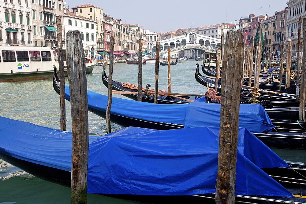 Gondolas line the Grand Canal beside the Rialto Bridge, Venice, UNESCO World Heritage Site, Veneto, Italy, Europe - 385-1678