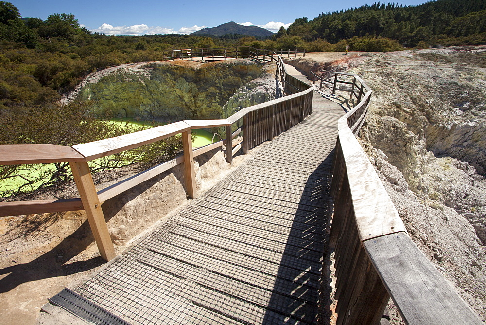 The Devil's Bath Walkway, Waiotapu Goethermal Wonderland, Rotorua, New Zealand, Oceania