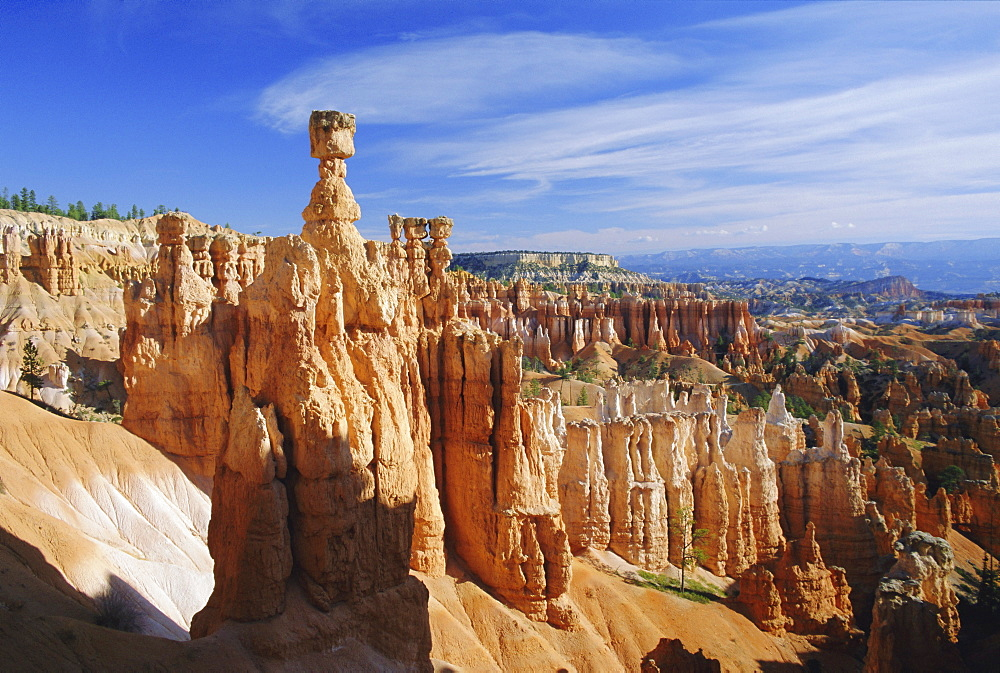 Thor's Hammer from the Navajo Loop Trail, Bryce Canyon National Park, Utah, USA
