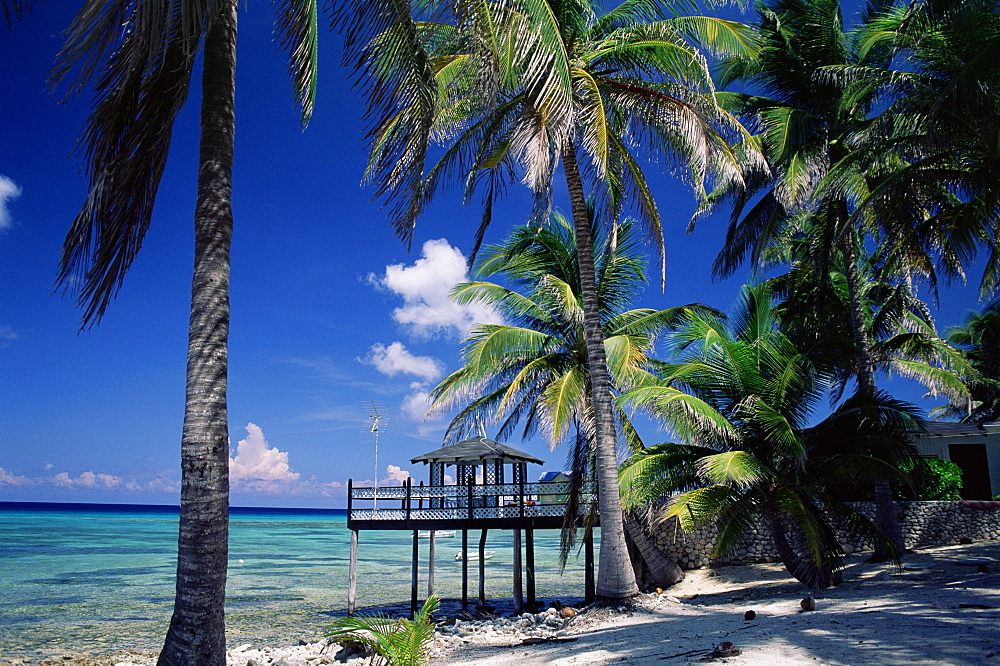 Waterside restaurant beneath palms, Old Man Bay, Grand Cayman, Cayman Islands, West Indies, Caribbean, Central America