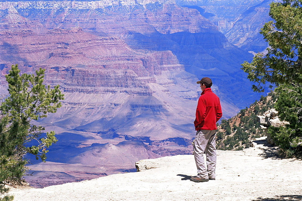 Tourist admiring the view from the South Rim, near Yavapai Point, Grand Canyon National Park, UNESCO World Heritage Site, Arizona, United States of America (U.S.A.), North America