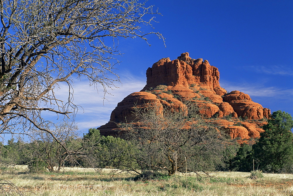 View to Bell Rock, considered a vortex by New Age metaphysicists, in early morning light, Sedona, Arizona, United States of America (U.S.A.), North America