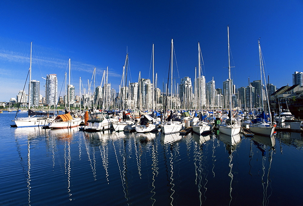 Yachts moored in False Creek marina, with downtown skyscrapers behind, Vancouver, British Columbia (B.C.), Canada, North America