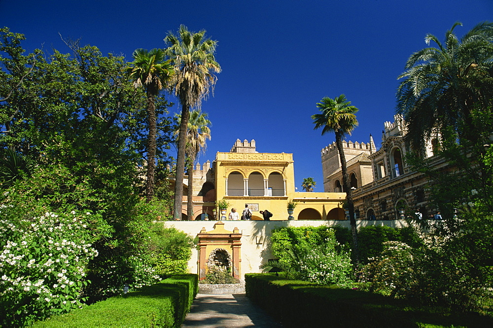 The gardens of the Reales Alcazares, Seville, Andalucia (Andalusia), Spain, Europe - 390-2560