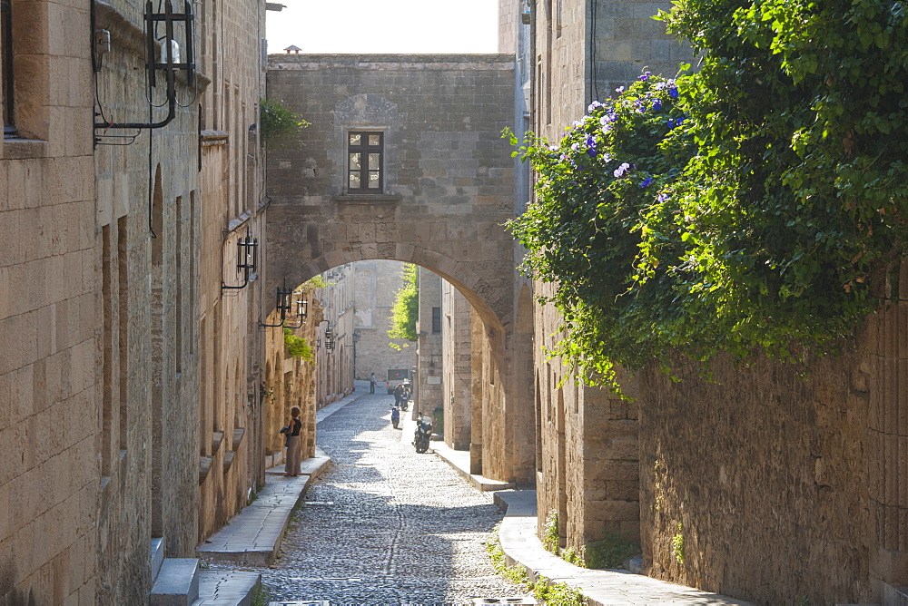 Odos Ippoton (Street of the Knights, Avenue of the Knights), Rhodes Town, Rhodes, Dodecanese Islands, South Aegean, Greece, Europe - 390-2933