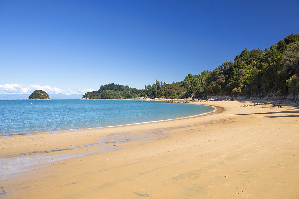 View along the sandy beach at Towers Bay, Kaiteriteri, Tasman, South Island, New Zealand, Pacific