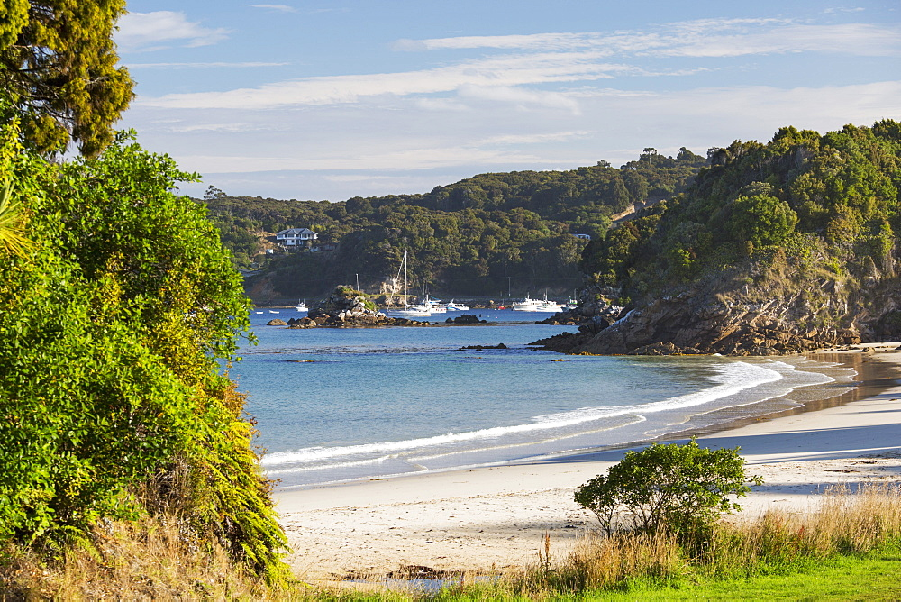 View over Butterfield Beach, Halfmoon Bay, Oban, Stewart Island, Southland, South Island, New Zealand, Pacific