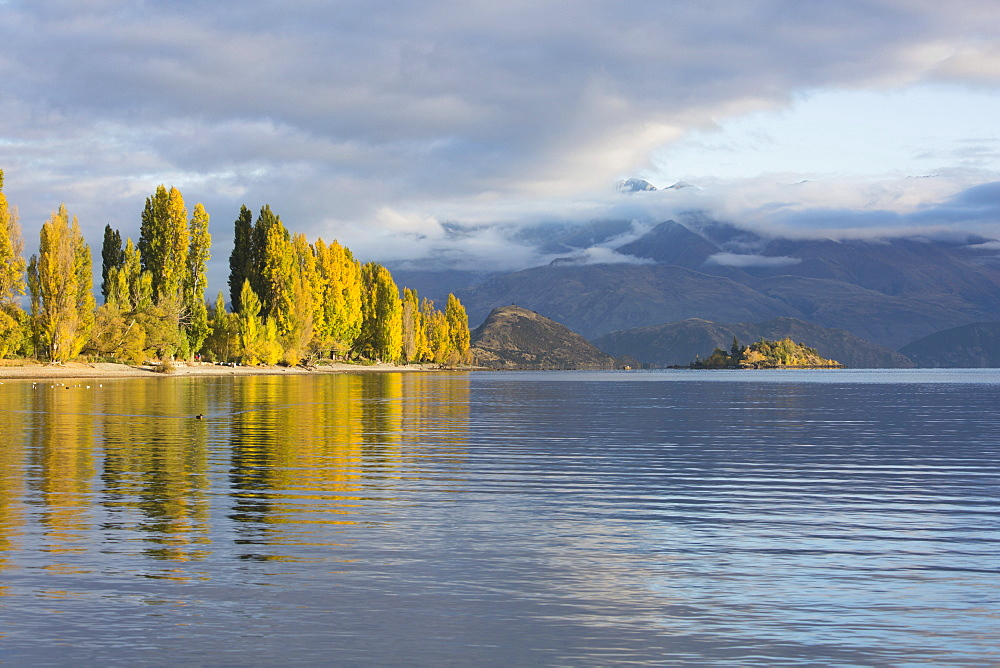 View across tranquil Lake Wanaka, autumn, Roys Bay, Wanaka, Queenstown-Lakes district, Otago, South Island, New Zealand, Pacific