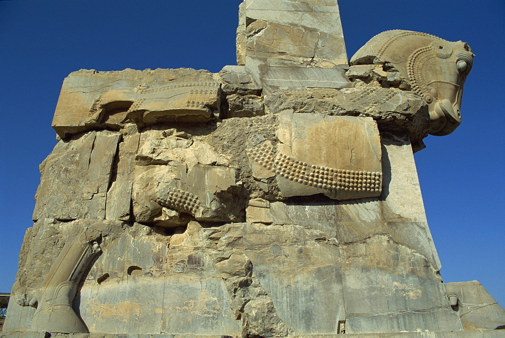 Detail, carving of horse on gateway to Hall of One Hundred columns, Persepolis, UNESCO World Heritage Site, Iran, Middle East - 391-5156