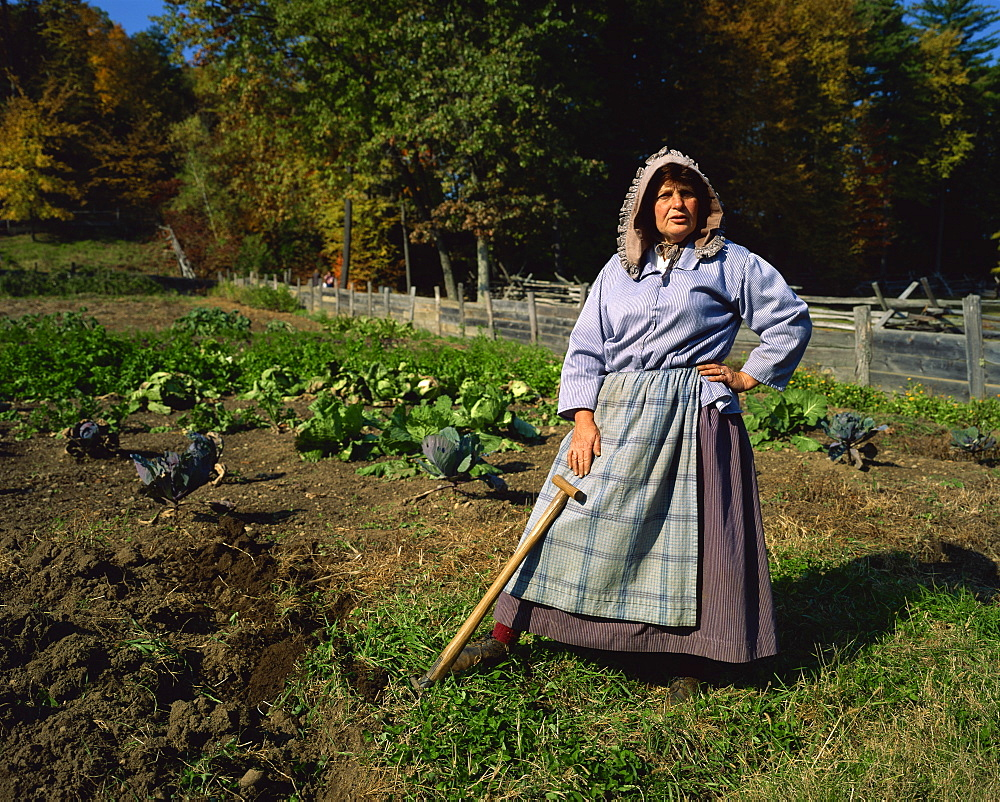 Hoeing the vegetable garden, recreated New England village life between 1790 and 1840, Old Sturbridge Village, Massachusetts, New England, United States of America, North America - 391-7040