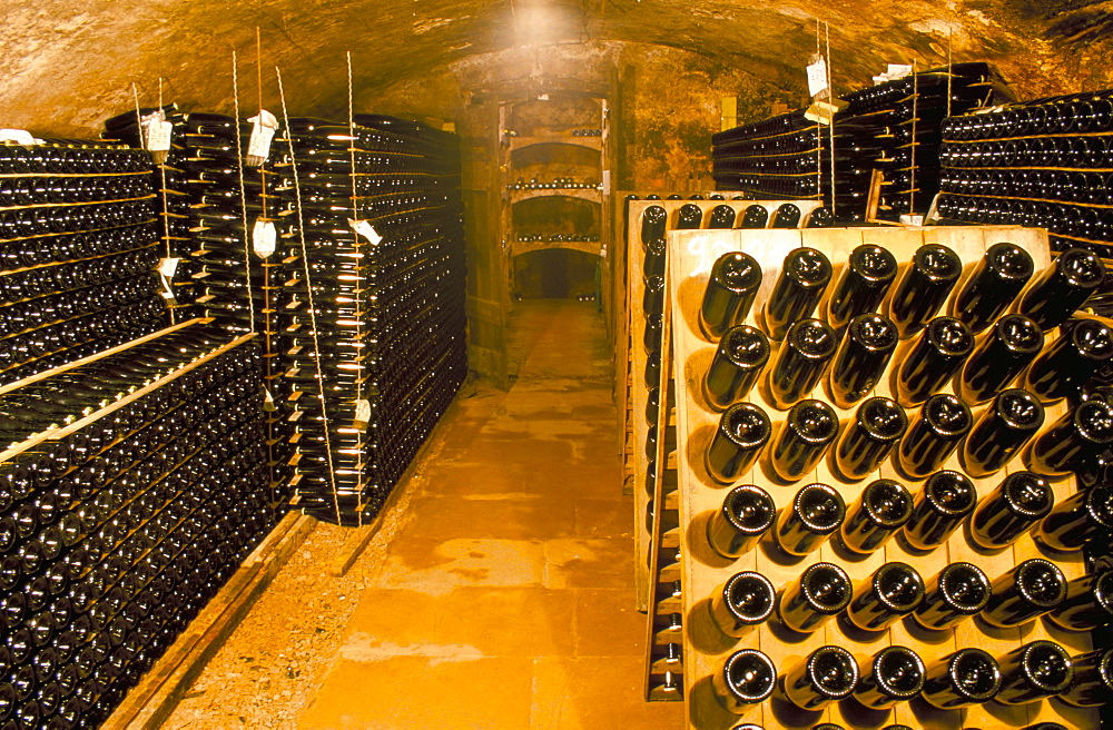 Cellar, champagne production, Saarburg, Saar Valley, Germany, Europe
