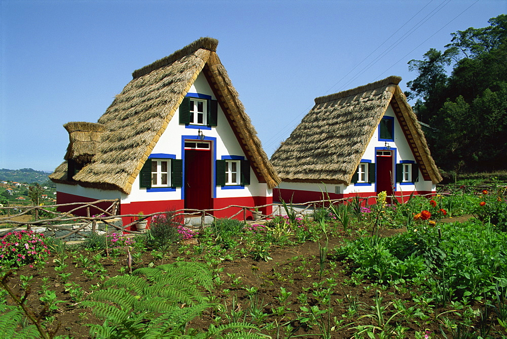 Old thatched farmhouses in gardens at Santana, Madeira, Portugal, Europe