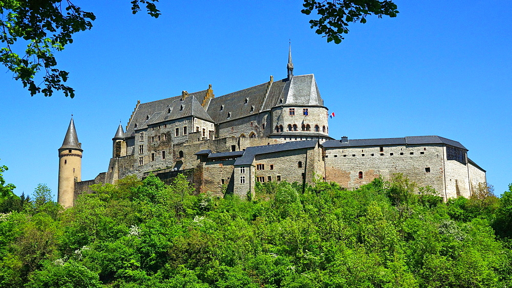 Vianden Castle in the canton of Vianden, Grand Duchy of Luxembourg, Europe