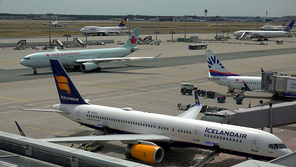 Jets in front of Terminal 2, Frankfurt Airport, Frankfurt am Main, Hesse, Germany - 396-9010