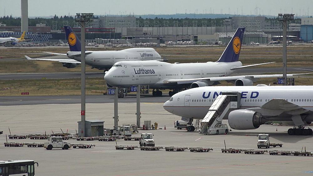 Lufthansa and United jets, Frankfurt Airport, Frankfurt am Main, Hesse, Germany