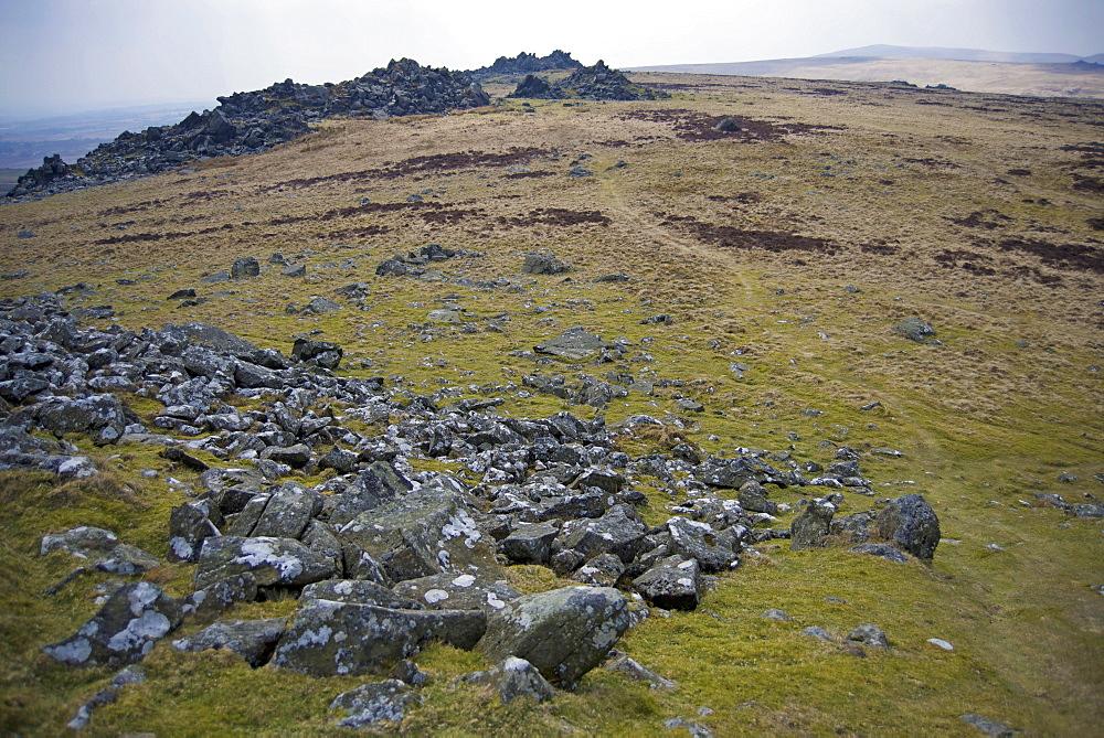 Preseli Hills (Mynyddoedd Y Preseli), source of Stonehenge bluestone megaliths, Pembrokeshire, Wales, United Kingdom, Europe  - 397-2551