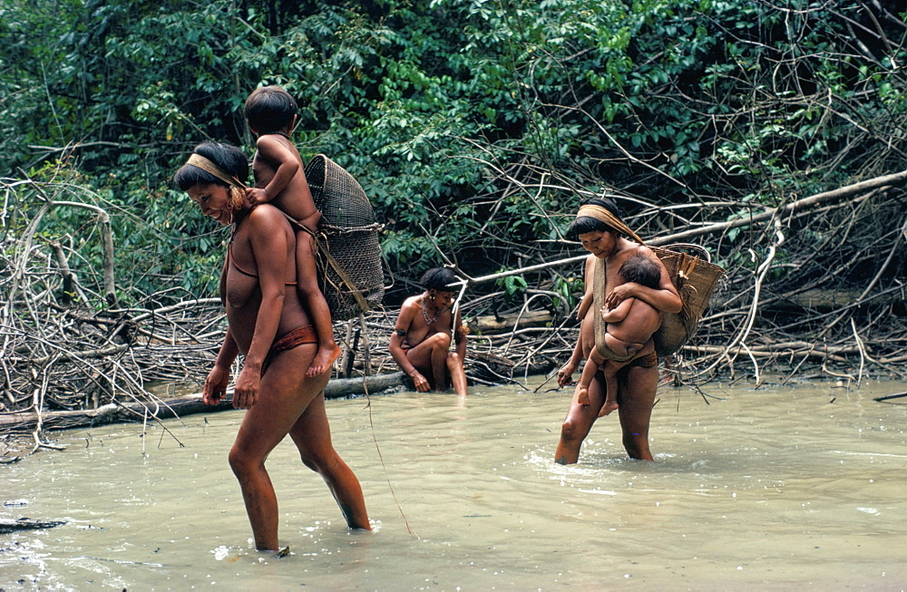 Yanomami Indians fishing, Brazil, South America