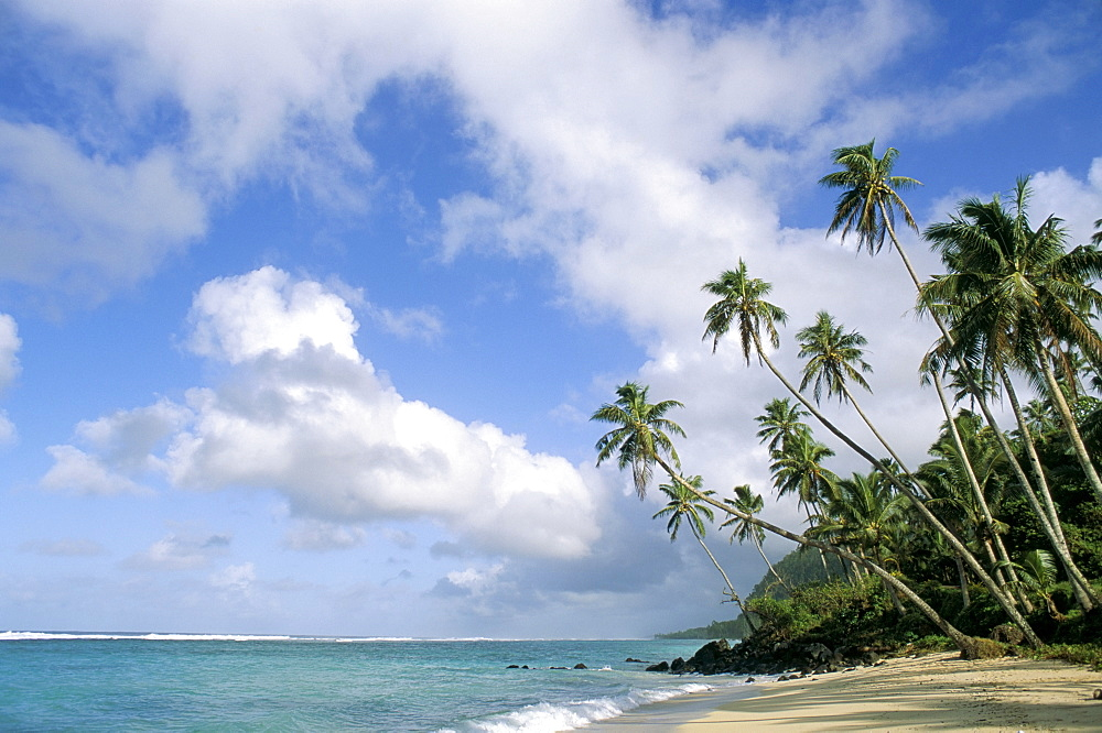 Palm trees and sea, Lalomanu Beach, Upolu Island, Western Samoa, Pacific