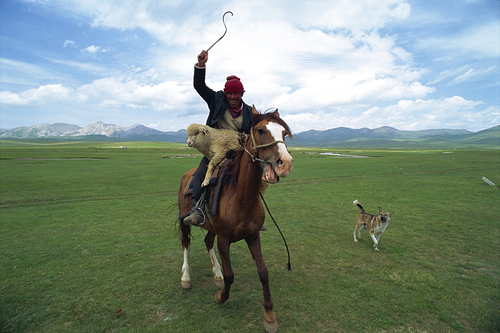 Wild Kirghiz nomad on horse with sheep, Lake Son-Kul, Kyrgyzstan, Central Asia, Asia