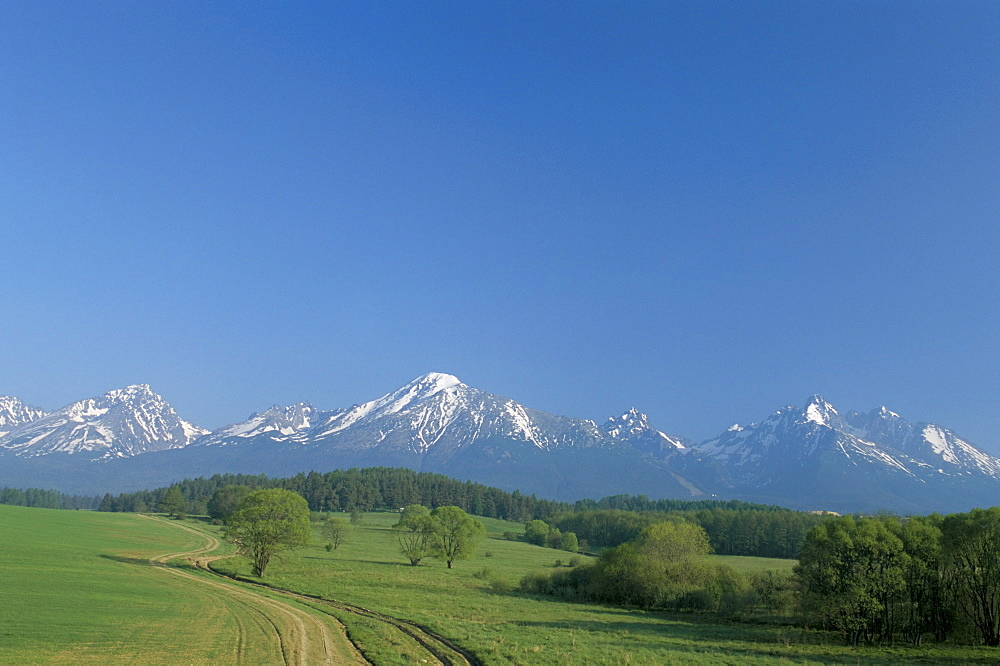 High Tatra Mountains from near Poprad, Slovakia, Europe