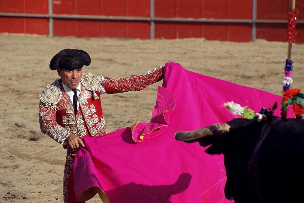 Bullfighter, bull and cape, New Fairs, Ponte de Lima, Minho, Portugal, Europe