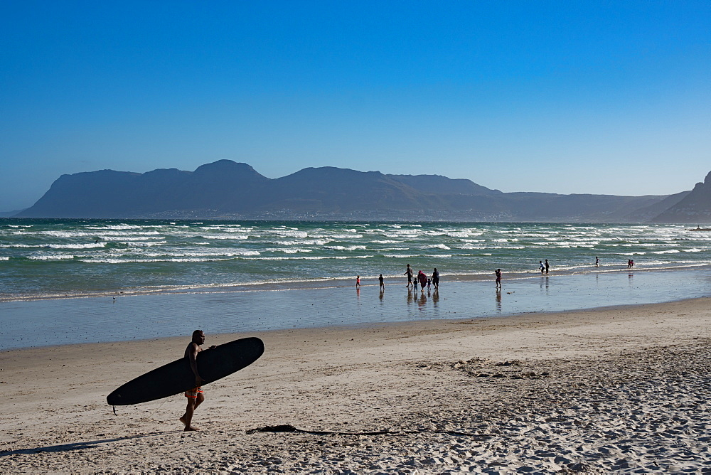 Surfer returning across beach with surfboard, False Bay, Cape Town, South Africa, Africa