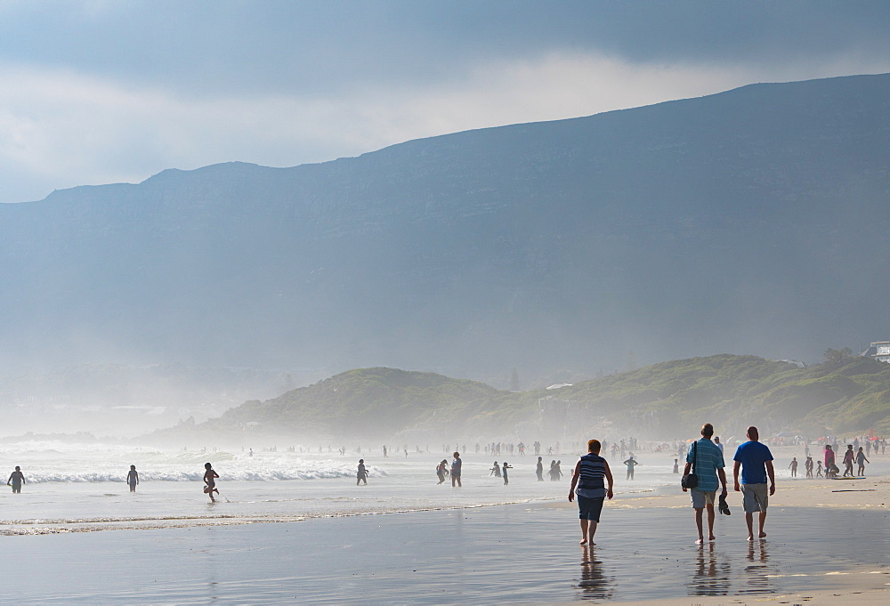 People enjoying walking on the main beach and in the sea in the late afternoon light, Hermanus, South Africa, Africa - 450-4200