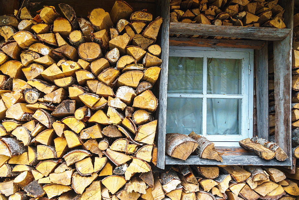 Storing up logs for winter, Kasmu, Estonia, Europe