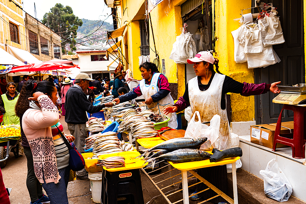 Women fishmongers selling at their shop-fronts near San Pedro Market, Cusco, UNESCO World Heritage Site, Sacred Valley, Peru