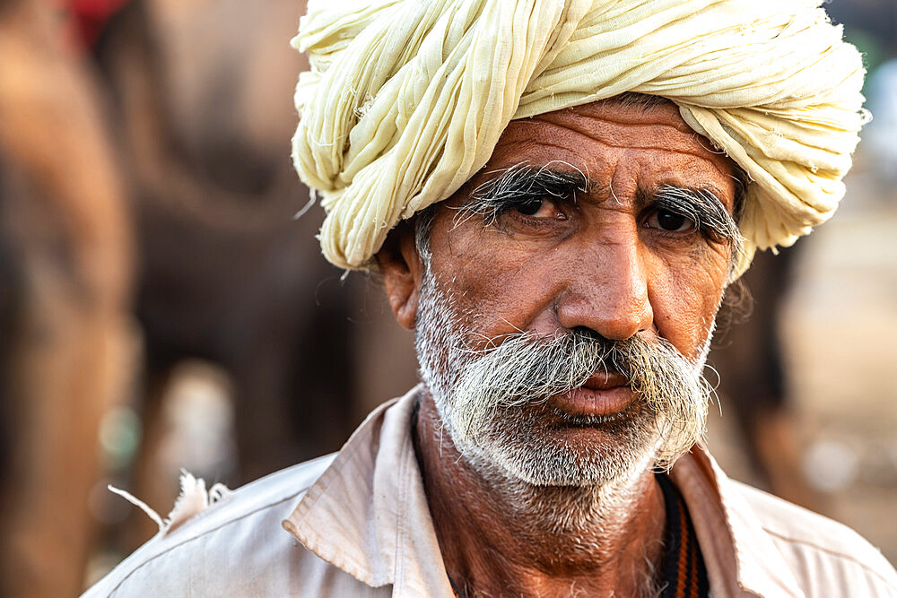 Close-up head shot portrait of bearded camel trader with cream turban, Pushkar Camel Fair, Pushkar, Rajasthan, India, Asia