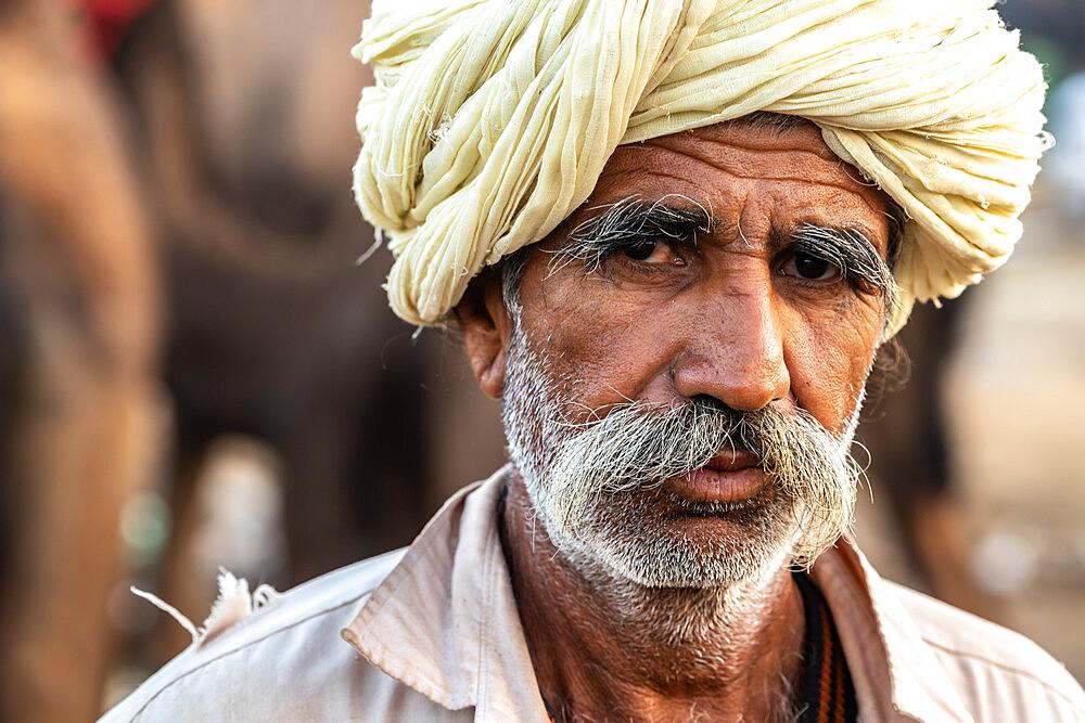 Close-up head shot portrait of bearded camel trader with cream turban, Pushkar Camel Fair, Pushkar, Rajasthan, India