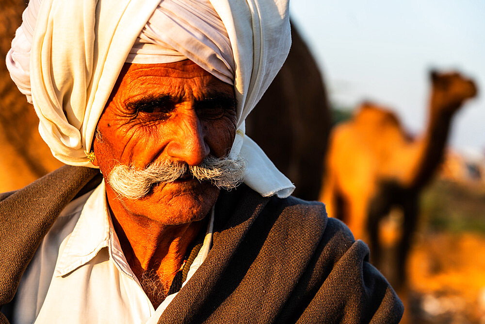 Close-up portrait of camel trader with cream turban and impressive moustache, camel in background, Pushkar Camel Fair.