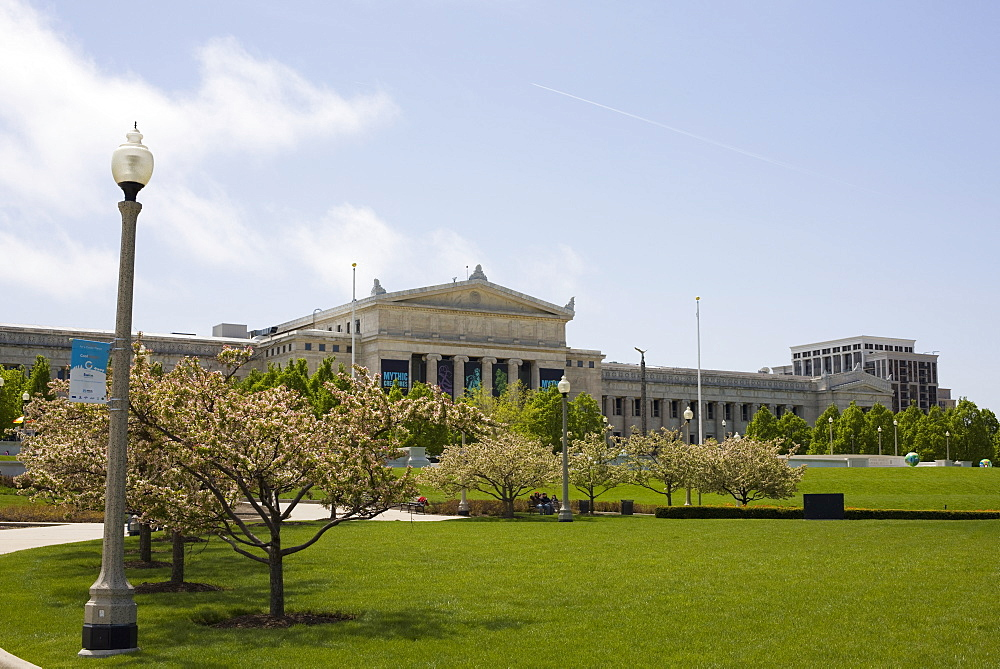 Field Museum, Chicago. Illinois, United States of America, North America - 462-2309