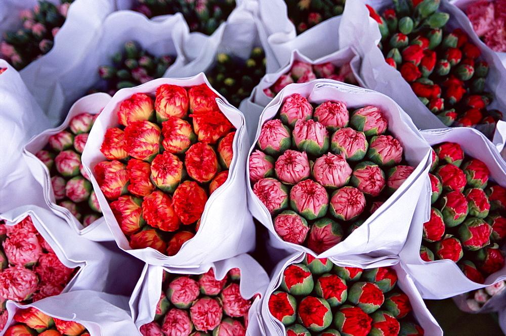 Carnations, flower market, Mong Kok, Kowloon, Hong Kong, China, Asia