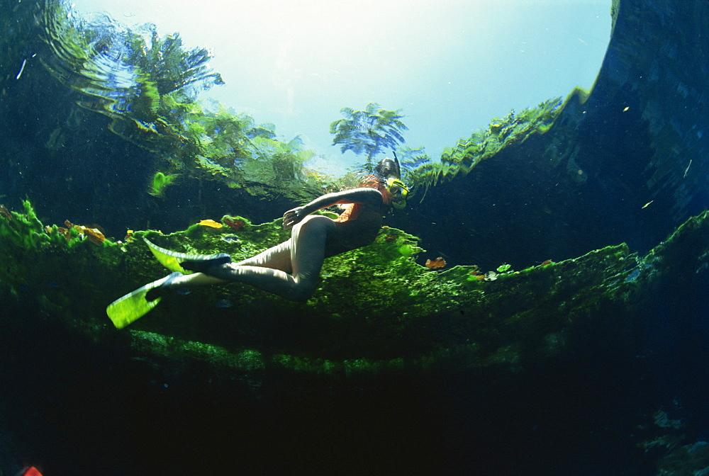 Woman snorkelling, Blue hole, Santo, Vanuatu, South Pacific Islands, Pacific