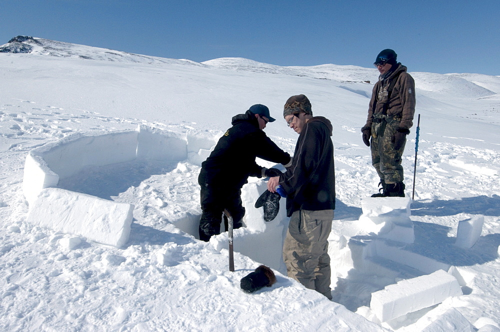 Inuit elder teaches igloo building to young men from the community of Pond Inlet, Nunavut, Canada, North America