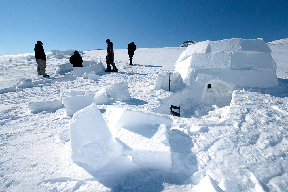 Inuit cutting snow blocks using a saw and a knife to make an igloo, Nunavut, Canada, North America