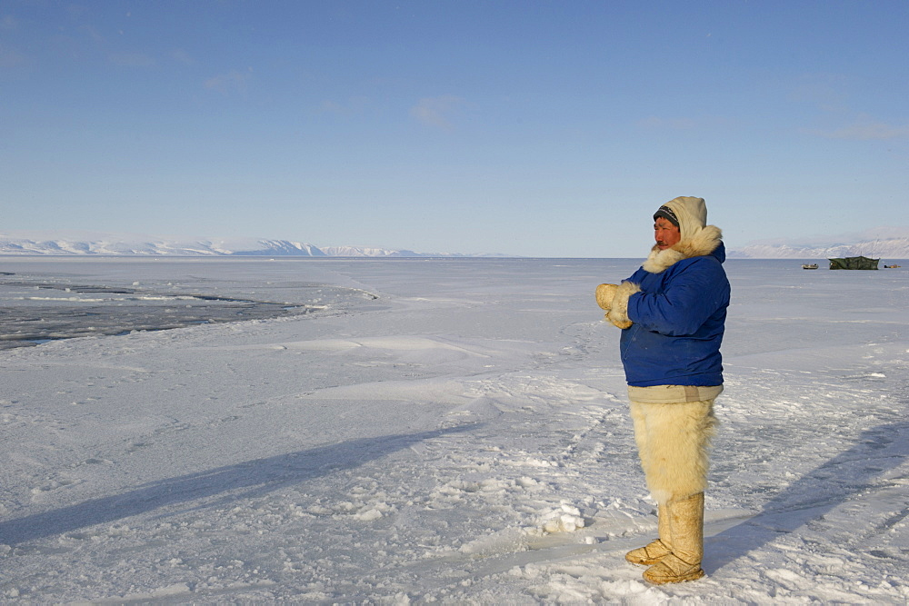 Inuit or Inughuit subsistence hunter with traditional clothing for winter and spring of seal skin boots (Kamiks), polar bear fur trousers, seal skin mitts and parka, Greenland, Denmark, Polar Regions