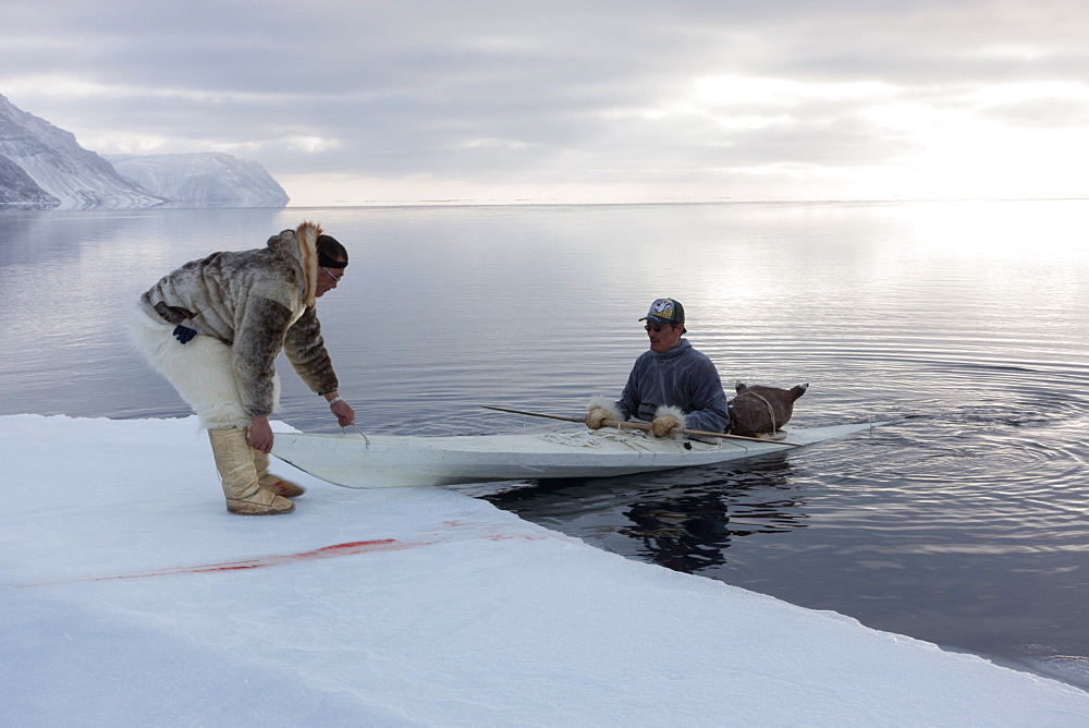 Inuit hunters use a kayak with a sealskin float to retrieve seals hunted at the floe edge, Greenland, Denmark, Polar Regions