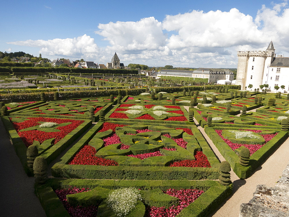 Formal gardens at the Chateau de Villandry, UNESCO World Heritage Site, Loire Valley near Tours, Indre et Loire, Centre, France, Europe