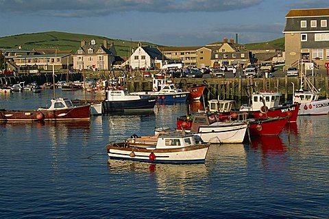 Boats moored in West Bay harbour, Dorset, England, United Kingdom, Europe