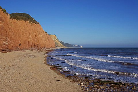 Sidmouth Beach looking towards Beer Head, Devon, England, United Kingdom, Europe - 478-4580