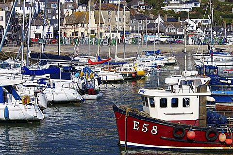 Harbour and Town, Lyme Regis, Dorset, England, United Kingdom, Europe - 478-4790