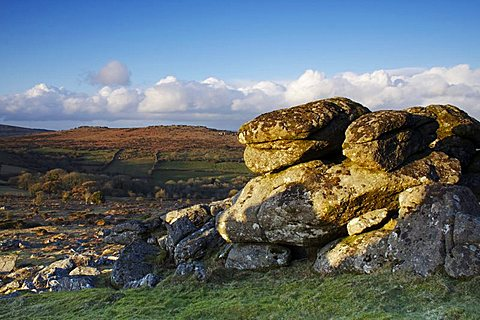 Evening light, Hound Tor, Dartmoor National Park, Devon, England, United Kingdom, Europe - 478-4869