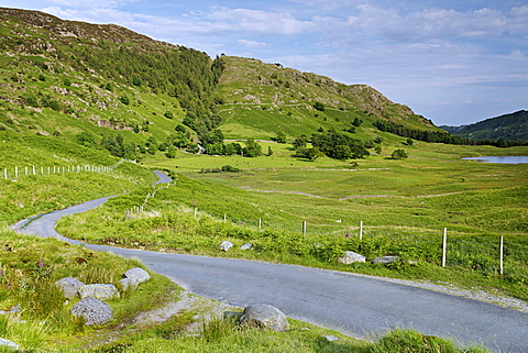 Road near Blea Tarn, Lake District National Park, Cumbria, England, United Kingdom, Europe