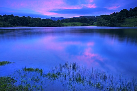 Loughrigg Tarn, Lake District National Park, Cumbria, England, United Kingdom, Europe - 478-5008